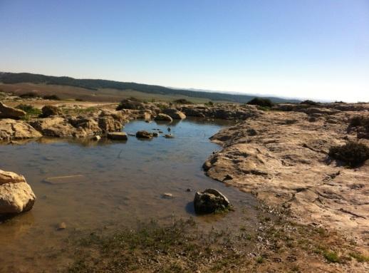negev-water