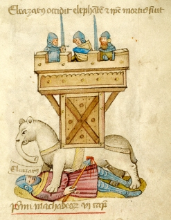 elazar avaran death elephant - 15th century
